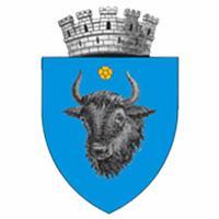 Inchirieri Auto Sighetu Marmatiei - Promotor Rent a Car Sighet